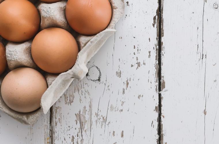 Żywność BIO – kilka słów o jajkach